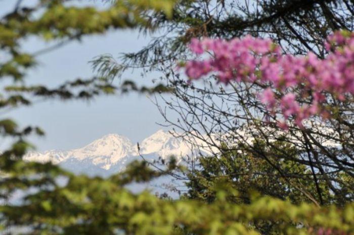 fotos del viaje a Japón Tokyo, Hakone, Nagoya, Takayama, Kyoto... Treneando la isla de Honshu. autor:Arian Tarbal