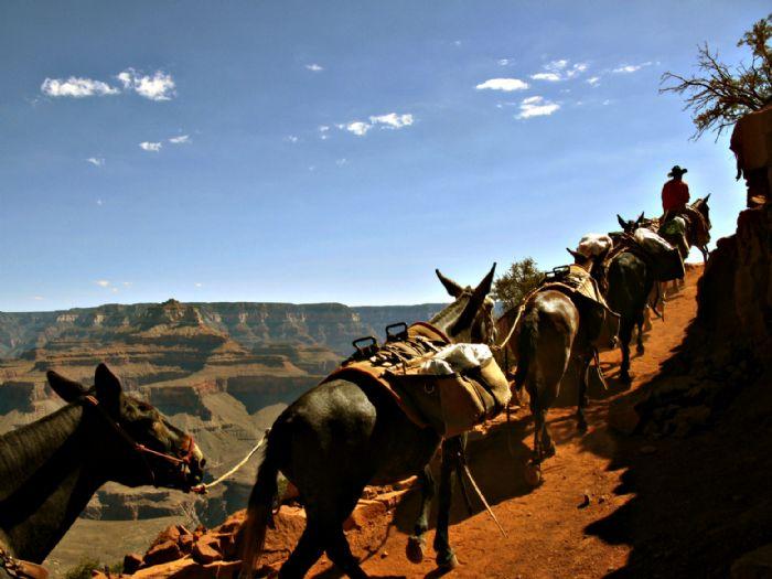 fotos del viaje a Estados Unidos Eclipse total de sol y PPNN del Colorado Plateau y las Rocosas autor:Ana Osanz