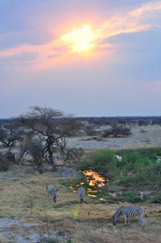 fotos de Namibia Observando la Vía Láctea. Safaris y Estrellas autor:Tomás Pintor