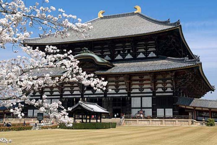 fotos del viaje a Japón Tokyo, Hakone, Nagoya, Takayama, Kyoto... Treneando la isla de Honshu. autor:Archivo Tuareg
