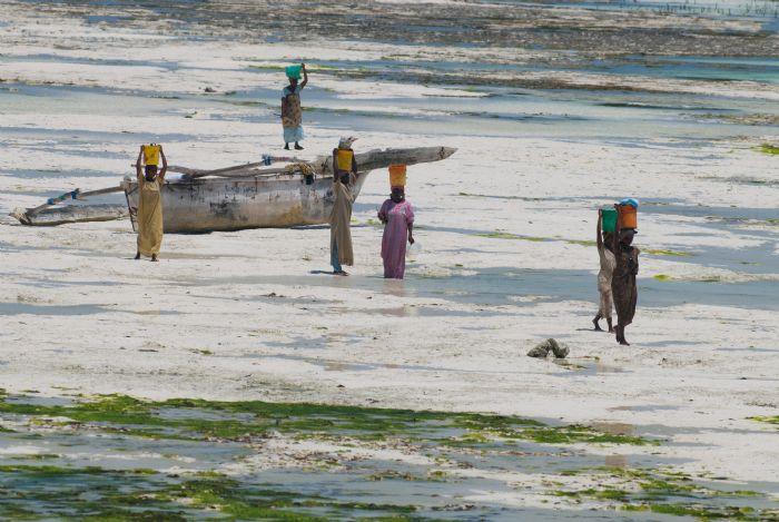 fotos del viaje a Tanzania Safari Tuareg: Lago Natron, travesía del Serengeti y Ngorongoro autor:GERVASIO  RODRIGUEZ