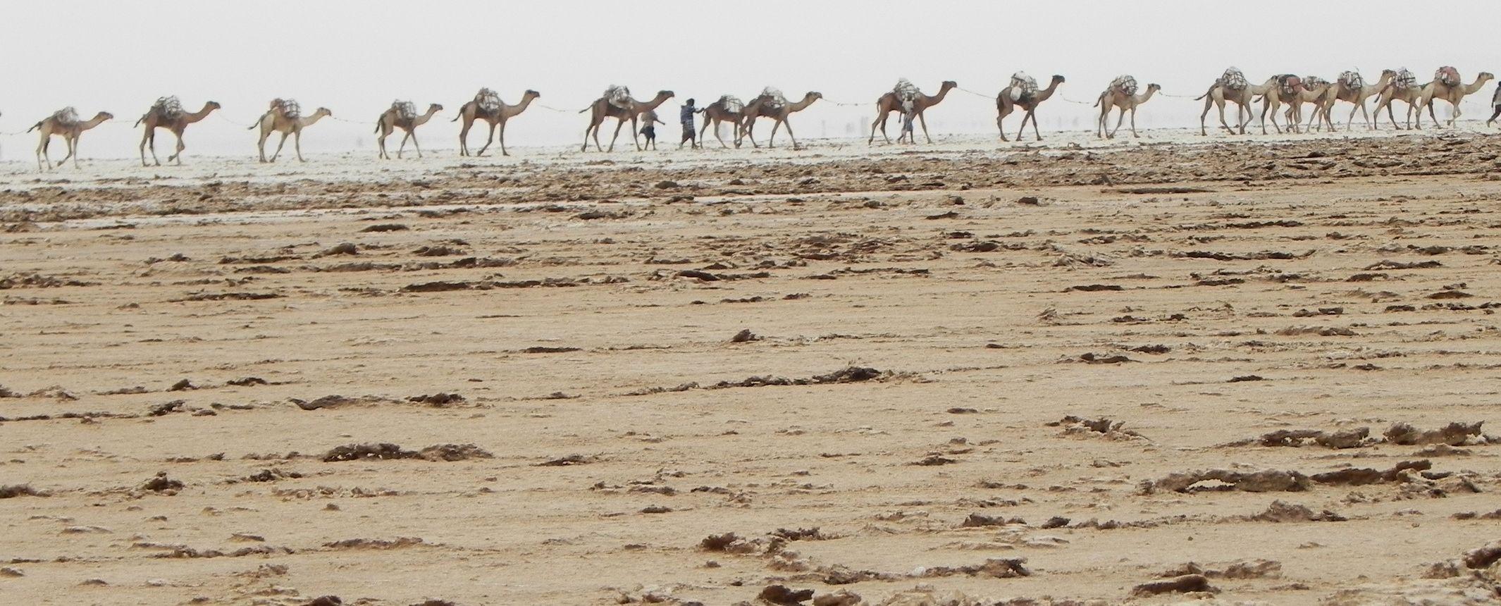 Etiopia - El otro Norte: Milhela en Axum, el Tigray, Danakil y Lalibela