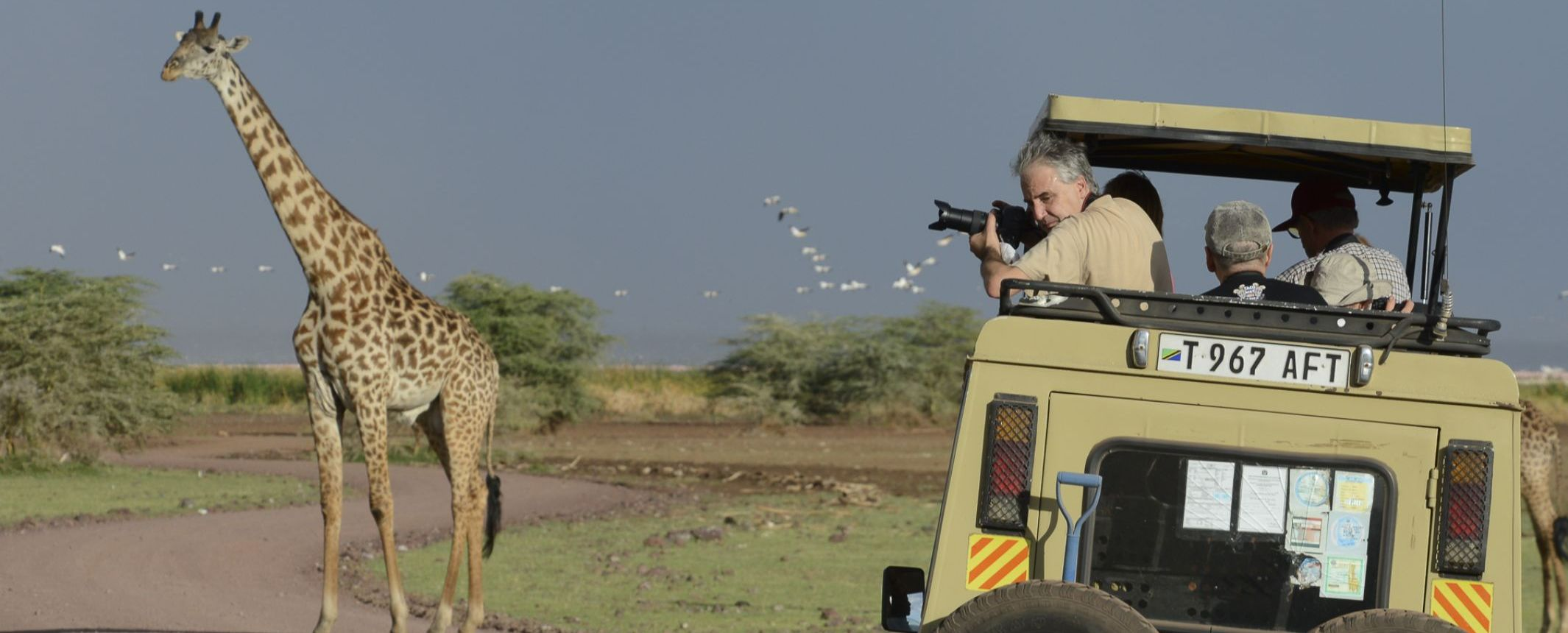 Tanzania - El Gran Espectáculo de la Migración