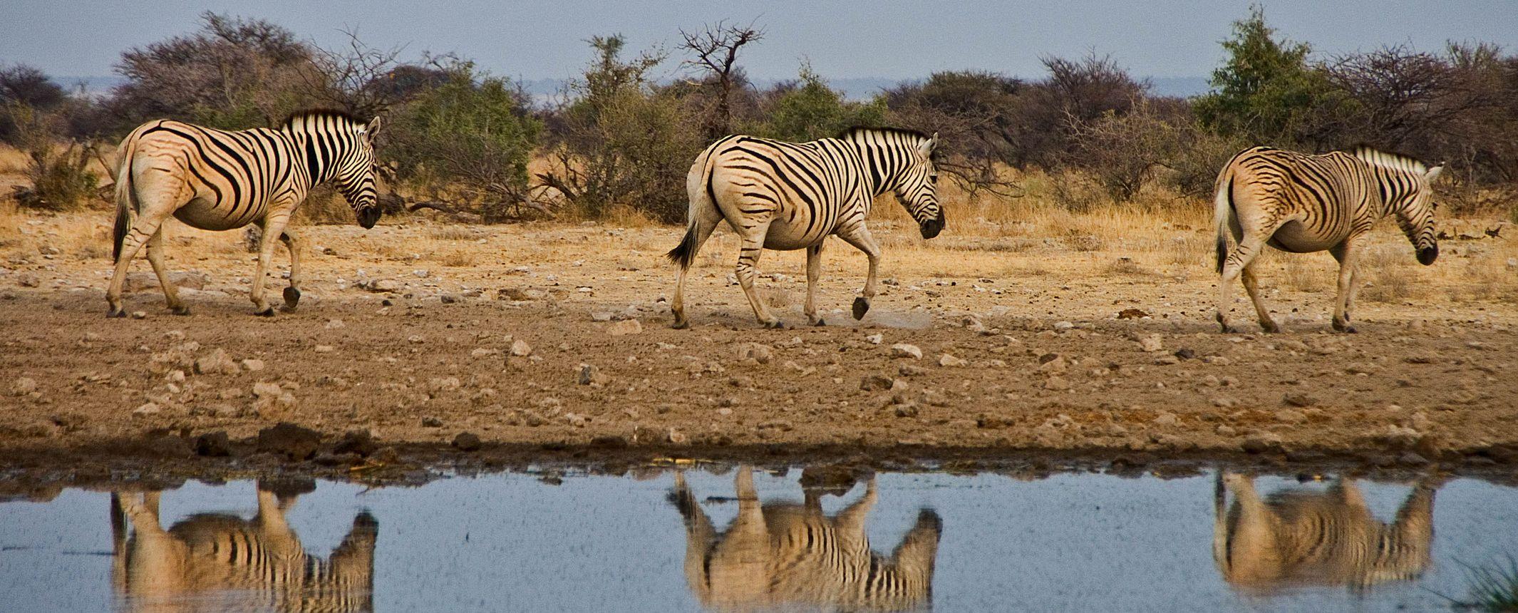 Namibia - Lo mejor de Namibia