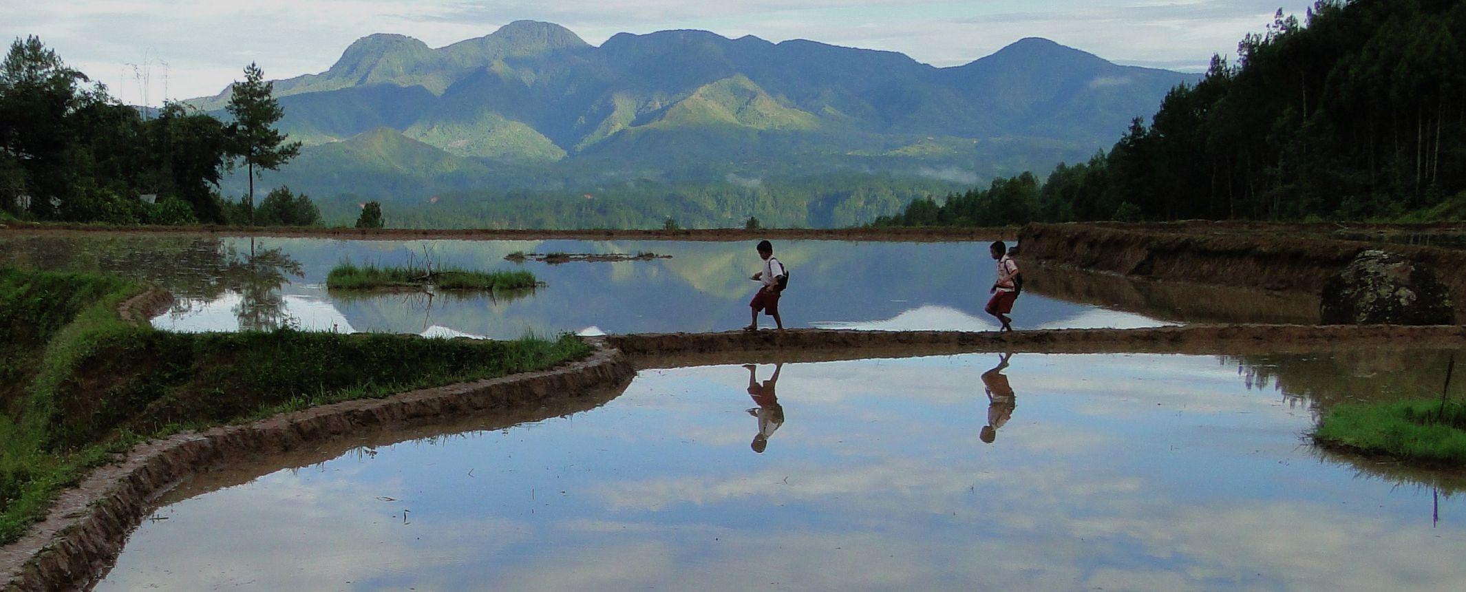 Indonesia - Islas de Borneo, Java, Sulawesi y Bali