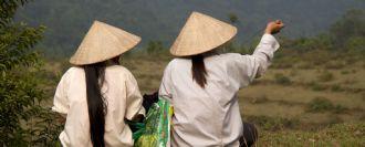 Vietnam i Angkor
