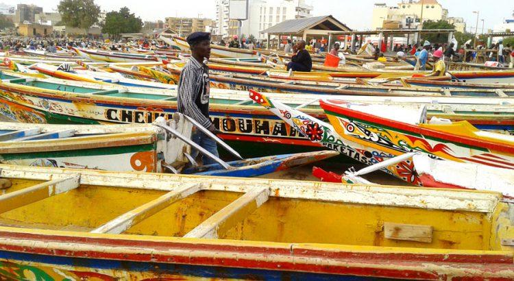 Senegal-Viatges-Tuareg-M-Jose-Plaza