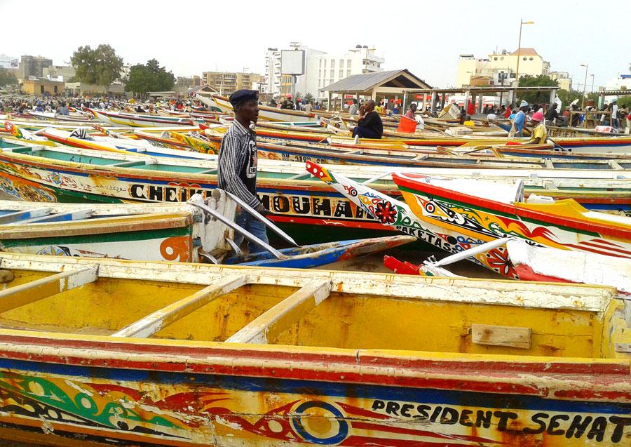 Senegal Viatges Tuareg | Autor M. José Plaza