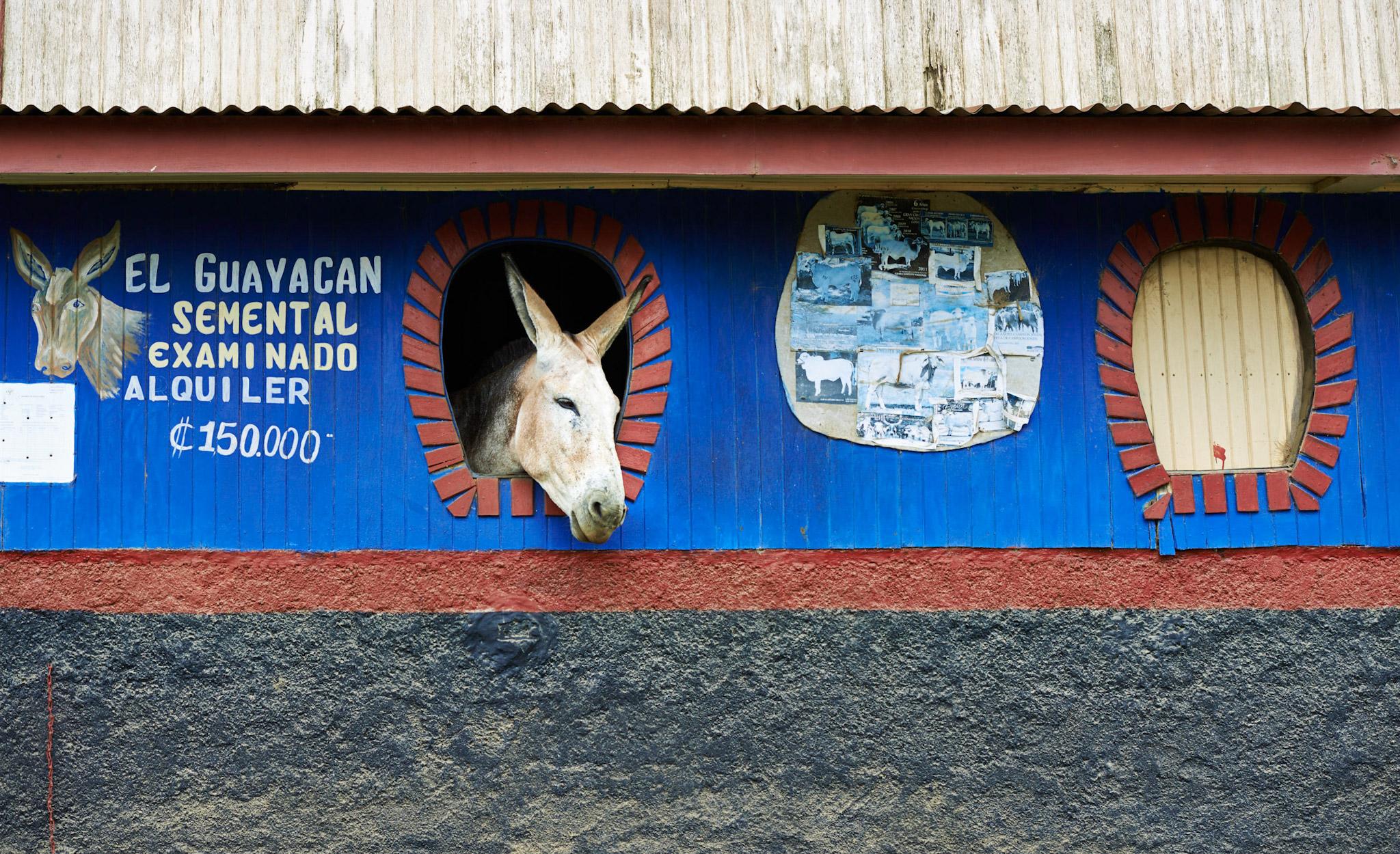 Viaje a Costa Rica Foto © Roberto Alcaraz