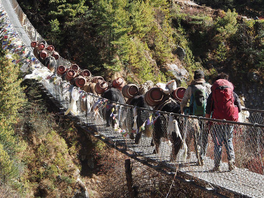 Nepal, Trasporte hacia el Everest | Foto © Feranando Garitagoitia