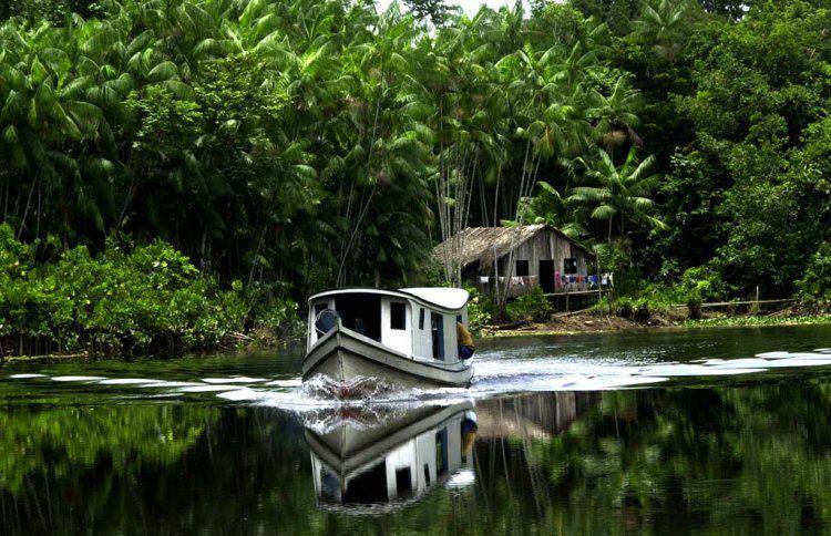 Embarcaciones habilitadas para viajar por el Amazonas