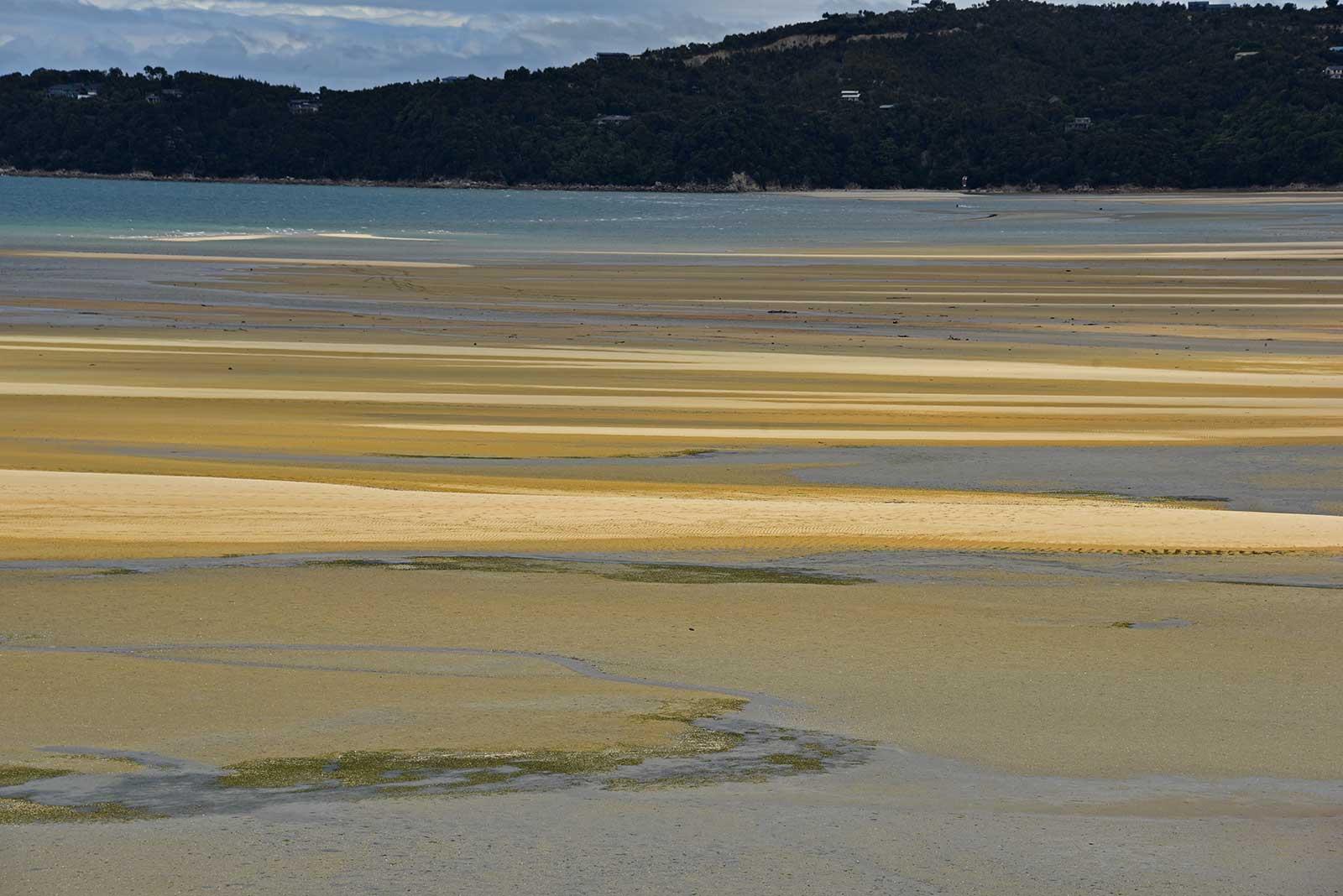VIaje a Nueva Zelanda. Abel Tasman. Autor fotografía Carme Munté
