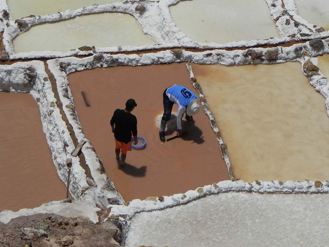 Salar de Mara -Autor Manel Garcia