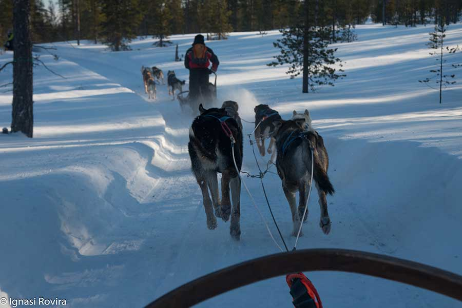 Actividades invernales - Auroras Boreales en Saariselka | Ignasi Rovira