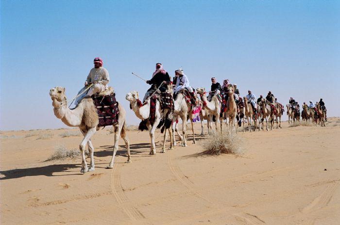 Ruta al reino de Arabia Saudita guiada por un especialista