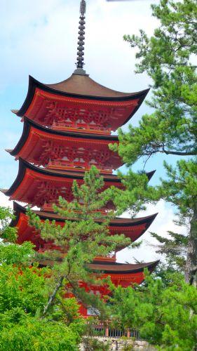 Viajar a Japón en primavera - Manuel Quintana